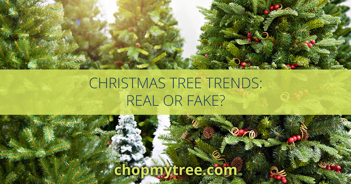 Christmas Tree Trends Real Or Fake Premier Tree Solutions