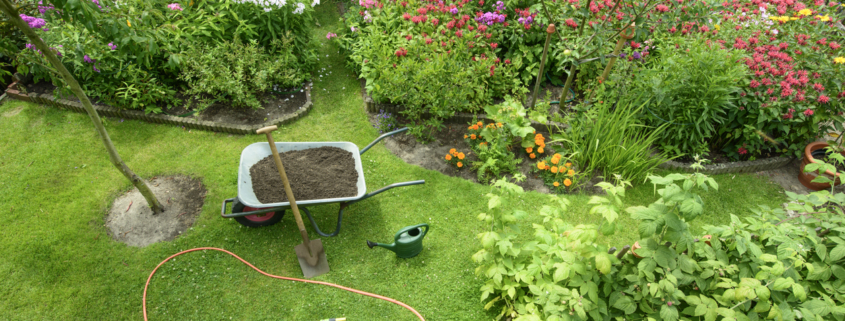A summer garden with flowers and tools.